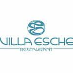 Villa Esche Logoentwicklung Werbeagentur Chemnitz Future Werbung
