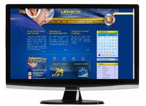 wildboys-chemnitz.de die neue Internetseite - erstellt durch die Future Werbeagentur Chemnitz