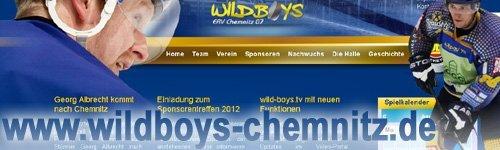 wildboys_chemnitz_webseite-future-werbeagentur