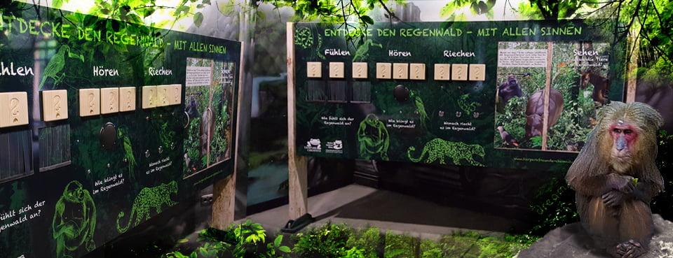 interaktives_Spiel_Tierpark_Chemnitz